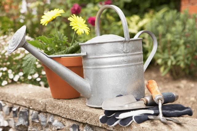Greener Gardening Series