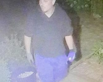 Suspect sought in residential break and enter investigation in Unionville