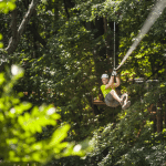 Treetop Trekking adventures await