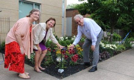 Union Villa gets new garden