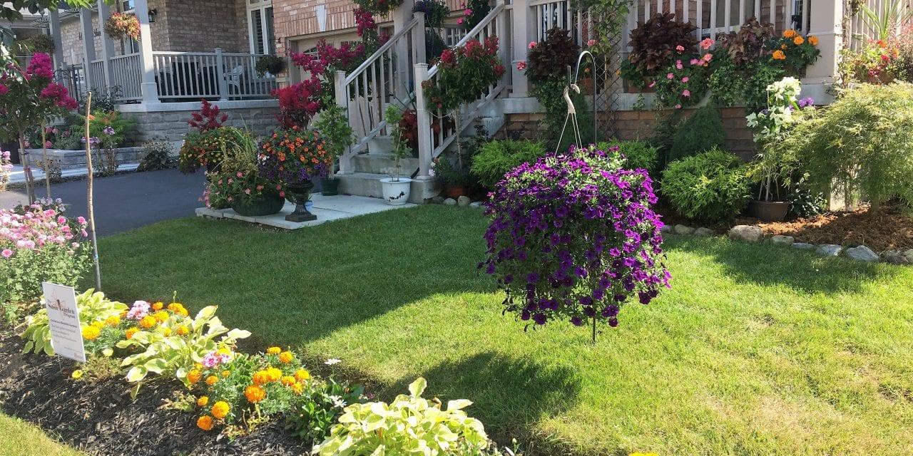 Celebrating the secret gardens of our city
