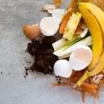 Tackling food, organic waste