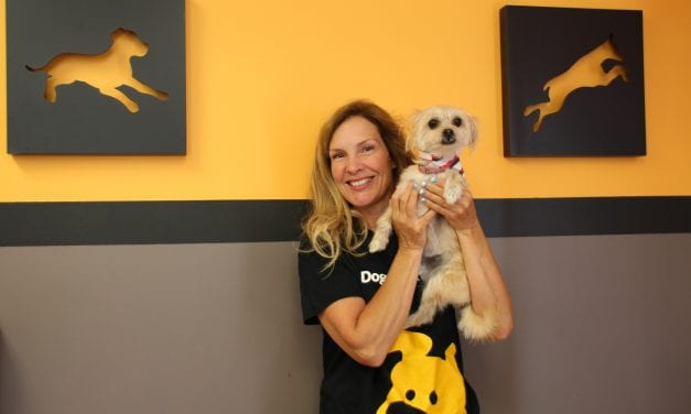 Pup business sees paw-sitive growth