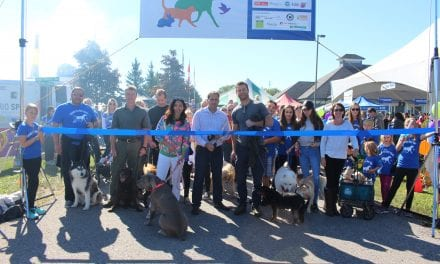 All Paws in at Ontario SPCA Walk