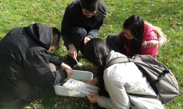 Markham students becoming sustainability champions