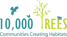 10,000 Trees returns