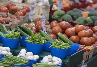 Ministry of Health launches new approach for Canada's Food Guide