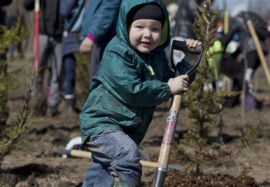 Be-LEAF it: you can help build urban forest